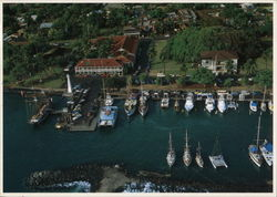 Aerial View of Lahaina Harbor