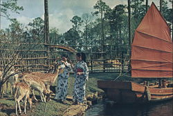 Kimono-Clad Oriental Guides Feed Deer-Marco Polo Park
