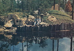 Girls in Traditional Kimonos Reflected in the Serene Waterways of Lovely Japanese Gardens