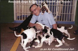 Rescued Dogs & Cats enjoy Sheriff Joe Arpaio