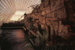 BioSphere2 - Dawn Over the Ocean