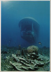 Underwater Sightseeing Submarine
