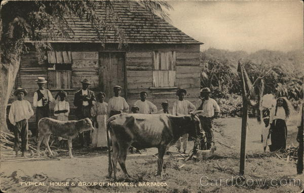 Typical House & Group of Natives, Barbados Caribbean Islands