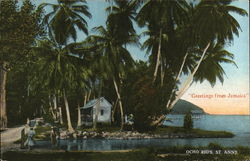 Greetings from jamaica. Postcard