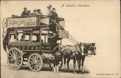 London Omnibus - Taylor Brothers Cocoa Advertising