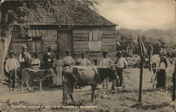 Typical House & Group of Natives, Barbados