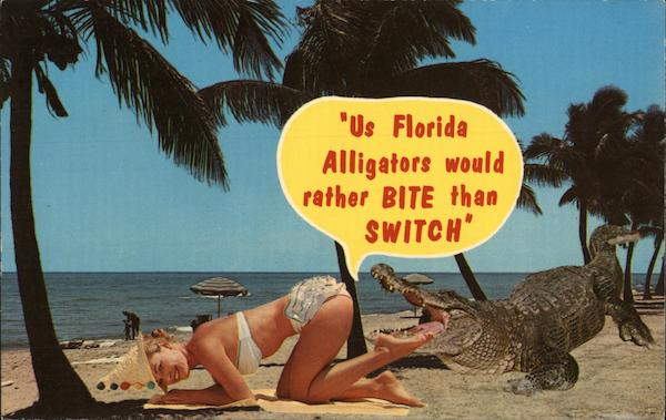 Us Florida Alligators Would Rather Bite Than Switch