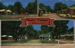 Maples' Cottages