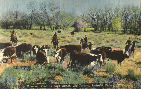 Round Up Time On Boys Ranch, Old Tascosa Amarillo Texas