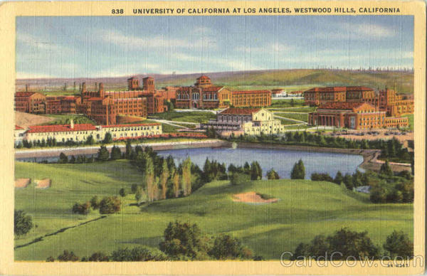 University Of California At Los Angeles West Woods