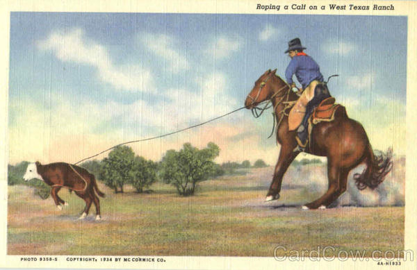 Roping A Calf On A West Texas Ranch Cowboy Western