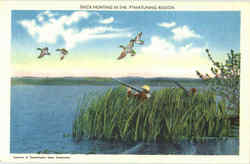 Duck Hunting In The Pymatuning Region