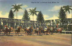 They're Off At Hialeah Park, Hialeah Park