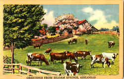 Greetings From Siloam Springs Postcard