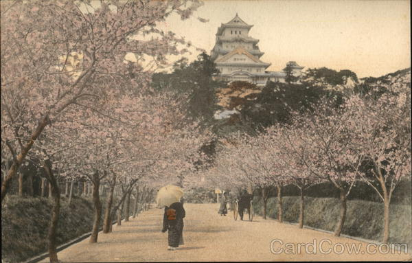 Himeji Castle and Cherry Blossoms Kobe Japan