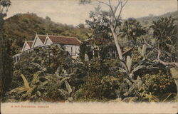 A Hill Residence, Jamaica