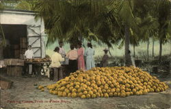 Packing Grape Fruit in Porto Rico
