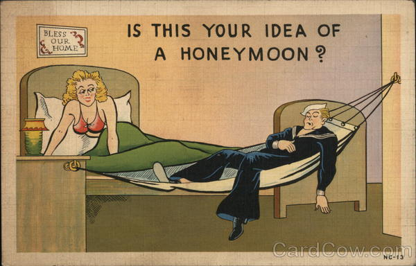 Is This Your Idea of a Honeymoon? Comic