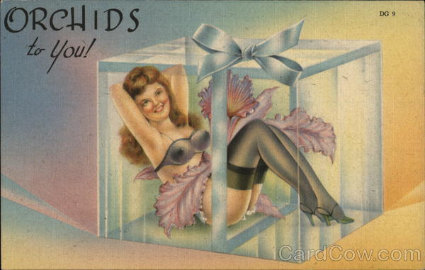 Orchids to You! Scantily Clad Woman in Gift Box Risque & Nude