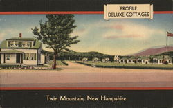 Profile Deluxe Cottages