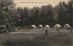 The Camp Grounds, Ferry Beach Park