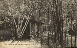 The Cabin in the Birches, Ossipee Lake