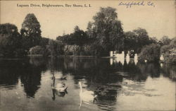 Lagoon Drive, Brightwaters, Bay Shore