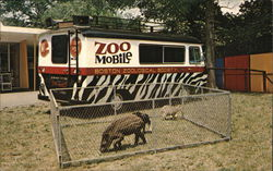 The Zoomobile, Childrens Zoo, Franklin Park