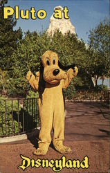 Pluto at Disneyland - Have You Seen Mickey?