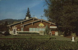 Italian Swiss Colony Winery - Main Tasting Room Postcard