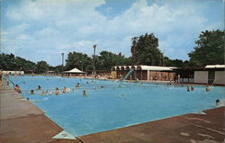 Municipal Swimming Pool at Waterworks Park Postcard