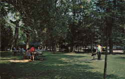 Picnic Grounds at the Blue Hole Postcard