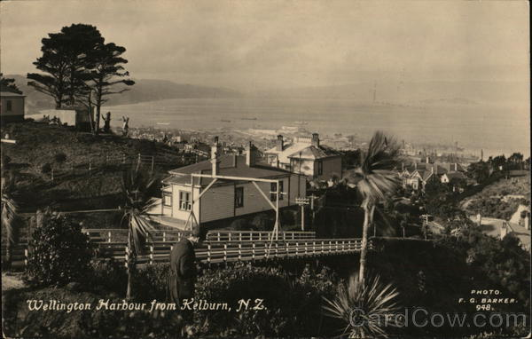 A view of Wellington Harbour Kelburn New Zealand F.G. Barker