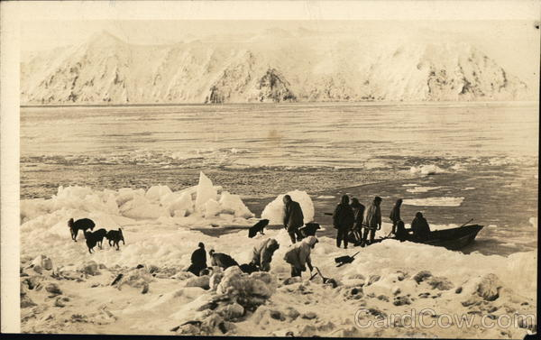 People and Animals Near Ice and Water Anchorage Alaska