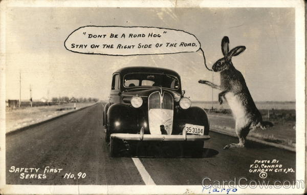 Large Rabbit Scolds A Driver Hogging The Road F. D. Conrad