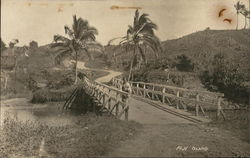 Man Walks Across A Bridge On Fiji Island