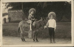 Two Children and Donkey Postcard