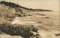Shore at Little Hunter Beach Postcard