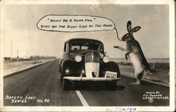 Large Rabbit Scolds A Driver Hogging The Road