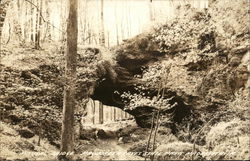 Natural Bridge, Maquoketa Caves State Park Postcard