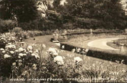 Flowers in Formal Garden, Frame Park