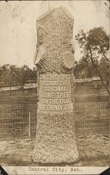 Large Tree Stump with Printed Message