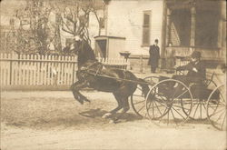Rearing Horse Pulling Carriage