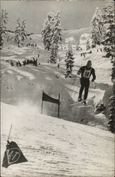 1960 Winter Olympics Tahoe National Forest California