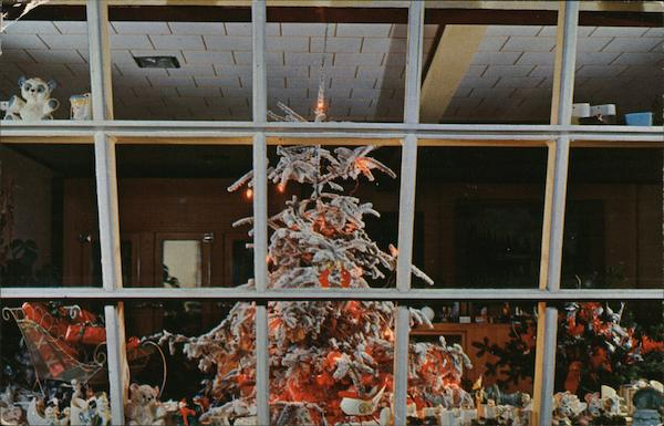 Vera Fuller's Flower Shop - Holiday Tree Visible Through Window Springfield Massachusetts