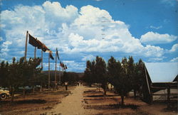 Philmont Scout Ranch - Tent City