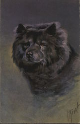 Painting of a Chow-Chow