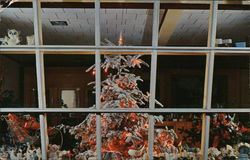 Vera Fuller's Flower Shop - Holiday Tree Visible Through Window