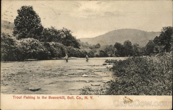 Trout fishing in the beaverkill river other new york for Roscoe ny fishing