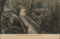 Olney Way, Mills College